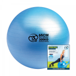 Swiss Ball, Pump & Online Guide - 65cm